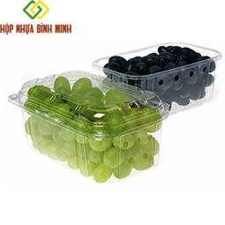 Khay nhựa đựng trái cây 500g