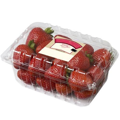 hộp pet đựng trái cây