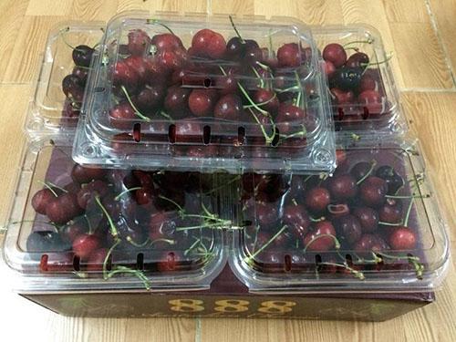 Hộp đựng trái cây 350g giá rẻ