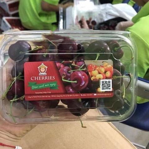 hộp trái cây 350g sài gòn