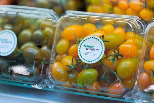 hộp đựng trái cây 500g giá rẻ